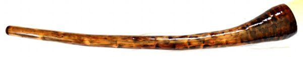 didge-57b