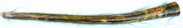 didge113b
