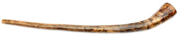 didge-36b