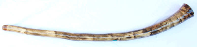 didgeridoo160b