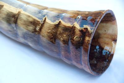 didgeridoo160c