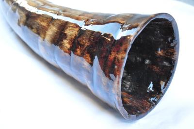 didgeridoo#161c