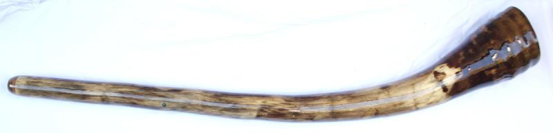 didgeridoo#162b